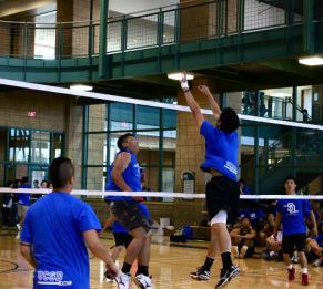 positions  volleyball basics